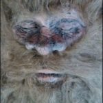 Picture: Man Claims He Killed Bigfoot in SA