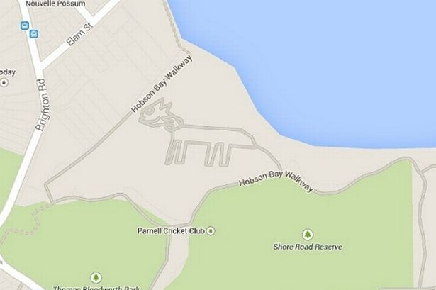 Picture about Mysterious, Giant Cat Appears on Auckland Google Map