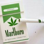 Picture Suggesting New Marlboro Cigarettes to Contain Marijuana