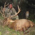 Picture Suggesting Photo of Mountain Lion Stalking Elk Hunter