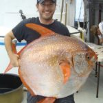 Picture of World's First Warm-Blooded Fish Discovered by Scientists