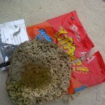 Picture Showing Insects, Bacteria and Fungus Found in Yippee Noodles