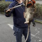 Picture Suggesting Giant 4-Foot-Long Monster Rat Found in London