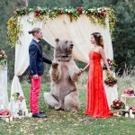 Picture Suggesting An Actual Bear Officiated this Russian Couple's Wedding