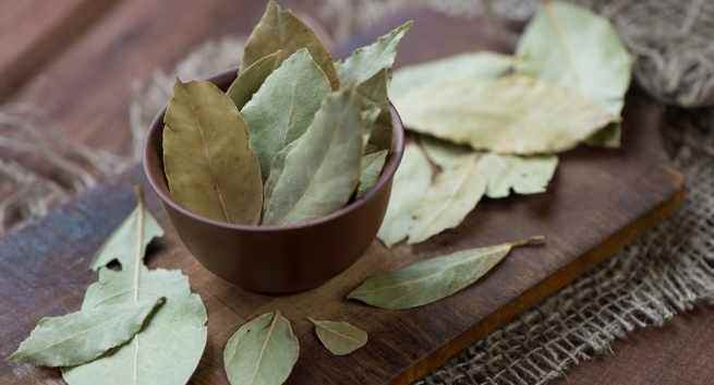 Picture Suggesting Cure Diabetes Taking Bay Leaves Preparation Daily